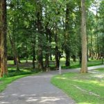Image for: Greensprings Park